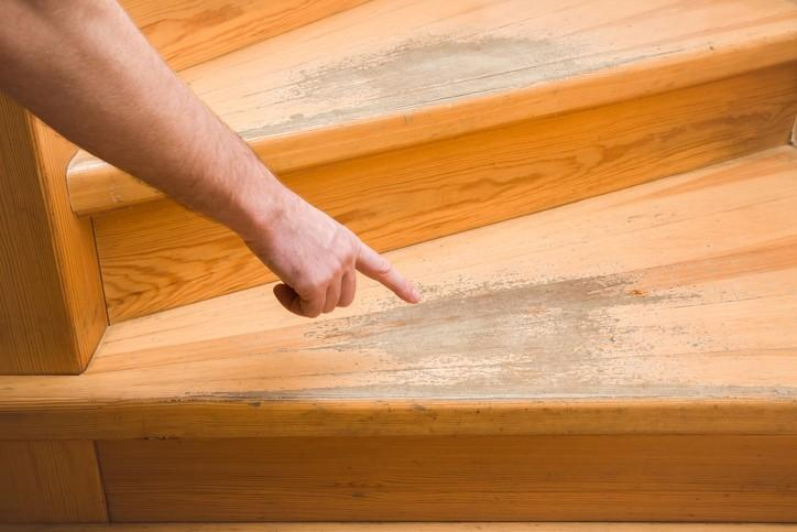 Unexpected Maintenance Tips for Your Shaw Hardwood Flooring