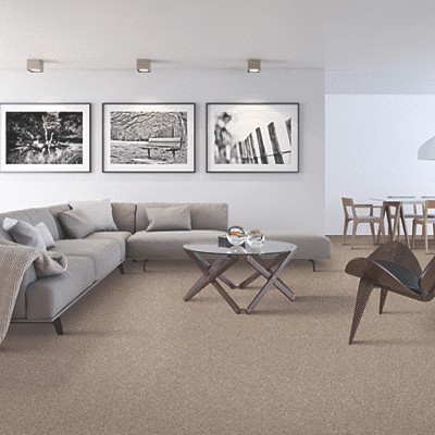 Which Type of Carpet is Best for Your Basement?